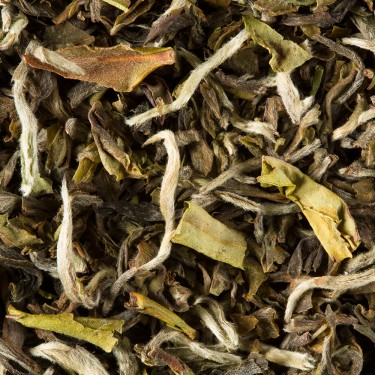 Tea from India - Darjeeling Margaret's Hope 1st flush 2015