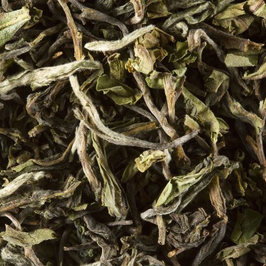 Tea from India - Darjeeling 1st Flush 2016 PHUGURI F.T.G.F.O.P.