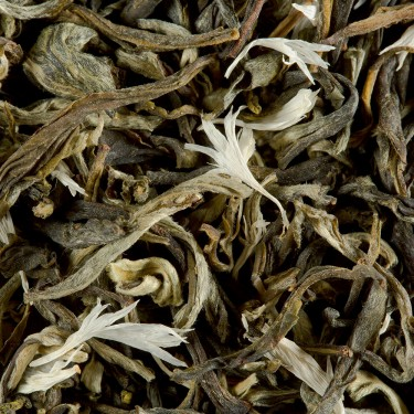 White tea - BLANC MYRTILLE