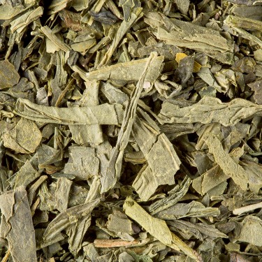 Tea from China - Sencha de Chine