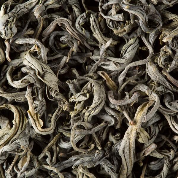 Tea from Vietnam - Shan Tran