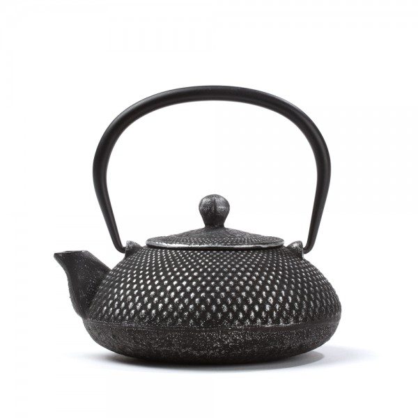Chinese cast iron teapot - 'Steppes'  0,4 L - silver polished
