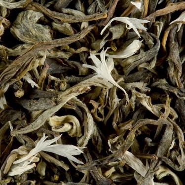 Thé blanc - BLANC MYRTILLE