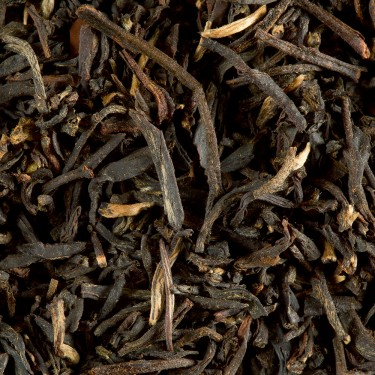 BLACK TEA - SMOKEY CROCODILE