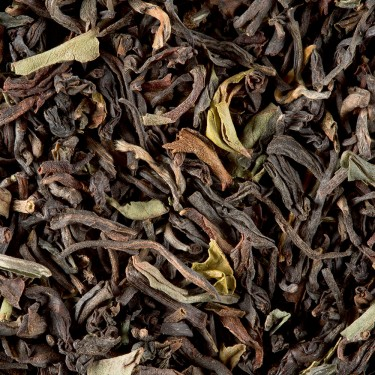 Tea from India - Darjeeling Jungpana G.F.O.P. 2nd flush