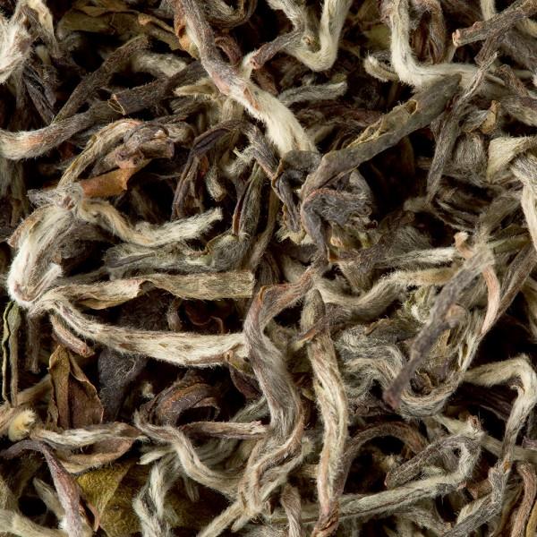 Tea from Nepal - Himalaya Shangri-La