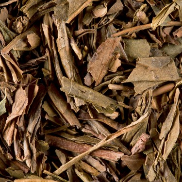 Tea from japan - Houjicha