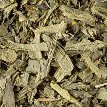 Thé de Chine - Sencha de Chine