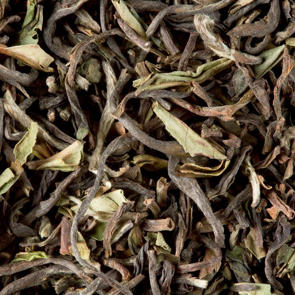 tea from Nepal - Guranse F.T.G.F.O.P. 1st flush