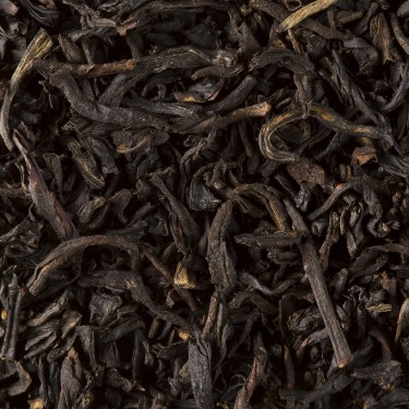 BLACK TEA - SMOKEY LAPSANG