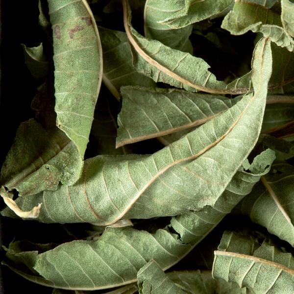 Herbal tea - Verveine