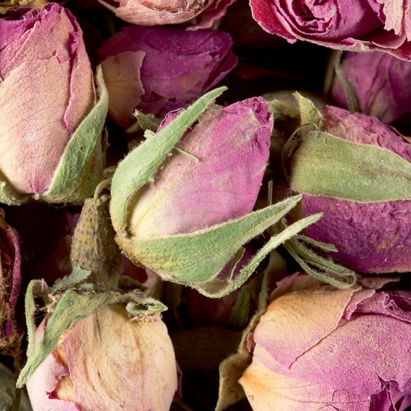 Herbal tea - Boutons de roses
