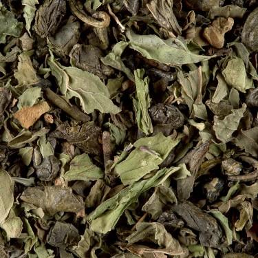 Green tea - Touareg