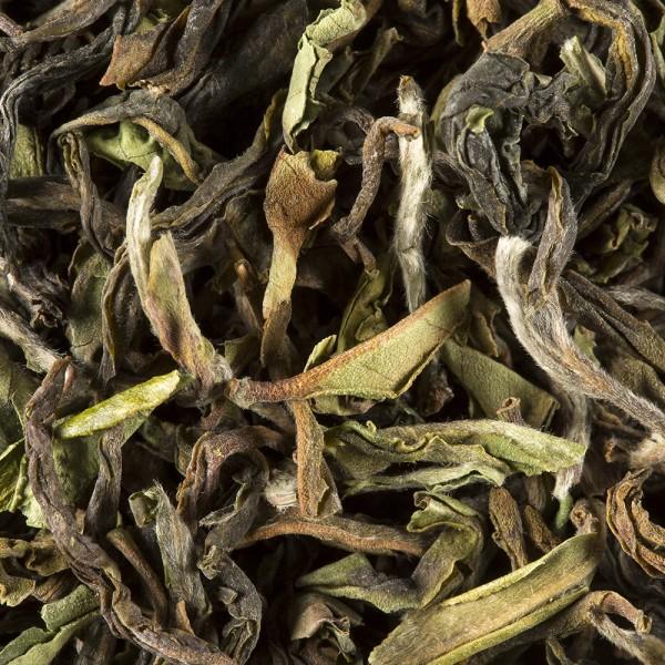 Tea from India - Darjeeling 1st flush 2017 NORTH TUKVAR S.F.T.G.F.O.P.