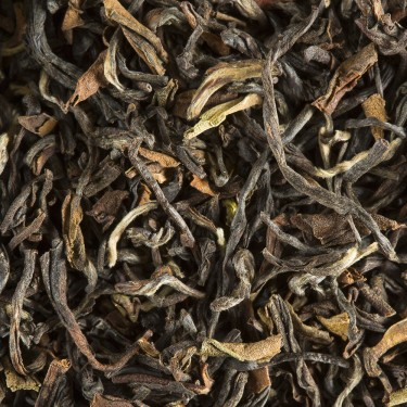 Tea from India - DARJEELING PHUGURI