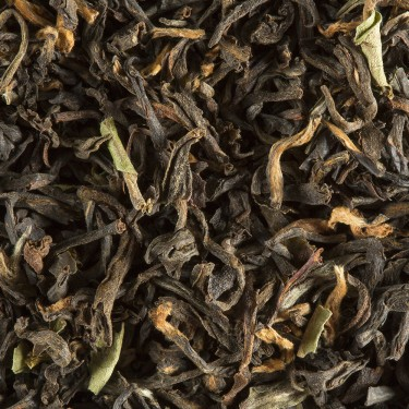 TEA FROM INDIA - ASSAM MOHUNBARI