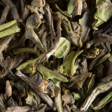 Tea from India - Darjeeling 1st flush 2018 JUNGPANA S.F.T.G.F.O.P.