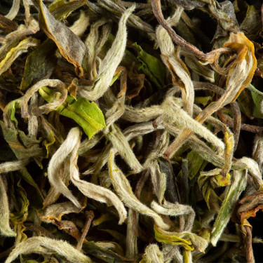 Tea from India - Darjeeling 1st Flush 2019 PHUGURI MOONLIGHT F.T.G.F.O.P.