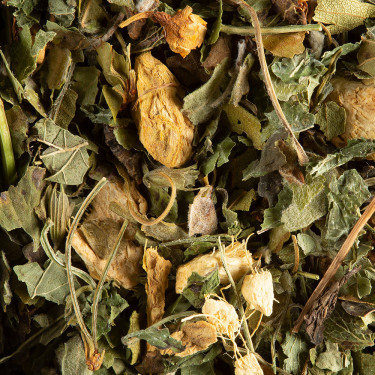 Herbal tea - Magic Ginger