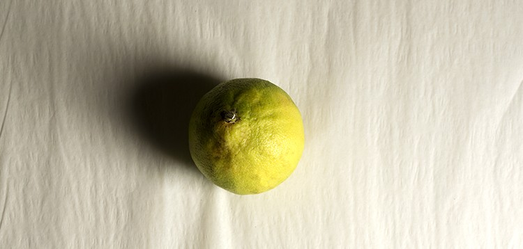 BERGAMOT AND ITS SECRETS